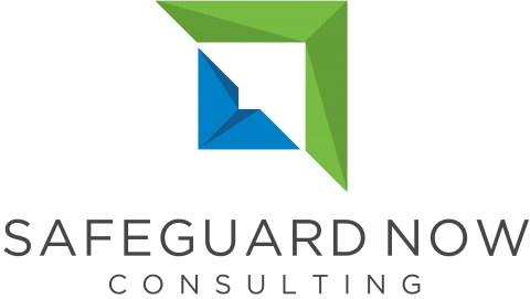 Safeguard Now Consulting